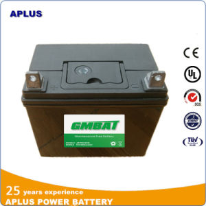 Lawn Tractor Easy Maintenance Lead Acid Battery U1r-7 12V 18ah pictures & photos