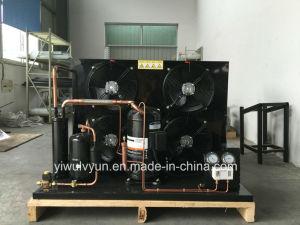 Copeland Semi-Hermetic Compressor Condensing Unit pictures & photos