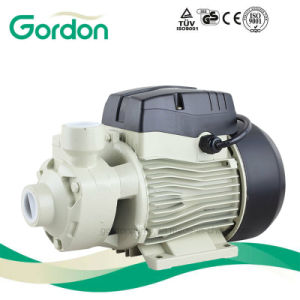 Gardon Electric Brass Impeller Peripheral Water Pump with Electric Cable pictures & photos