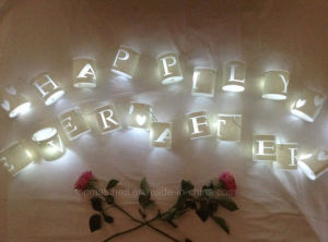 Personalised Paper Lantern Fairy Lights 20 LED Lights String pictures & photos
