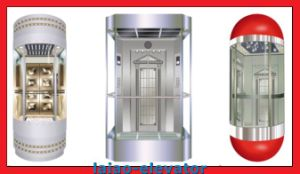 Glass Car Decoration Good Price Sightseeing Elevator pictures & photos