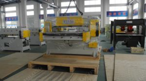 Automatic Double-Side Hydraulic Cutting Machine by Swing Arm Type Feeding pictures & photos