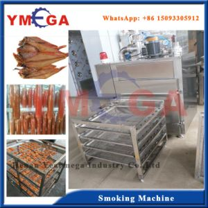 Stainless Steel Smoking Room for Tuna Fish Fillet Catfish and Sausage pictures & photos