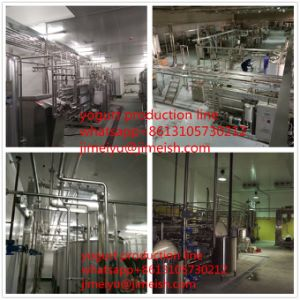 Long Shelf Life Yogurt Production Line Fruity Flavor and Sterilized Processing Type Yogurt Longlife Yoghurts Fruits pictures & photos