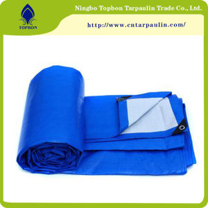 PE Tarpaulin Sheet Reinforced HDPE Plastic Tarpaulins Coated Tarps Tb003 pictures & photos