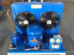 Maneruop Air Coold Condensing Unit pictures & photos