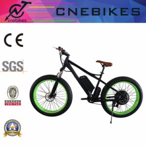 Electric 48V 750W Fat Tire Beach Snow Bike pictures & photos