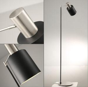Ce/UL Matt Nickel and Black Modern Indoor Standing Light Floor Lamp for Bedroom / Living Room pictures & photos