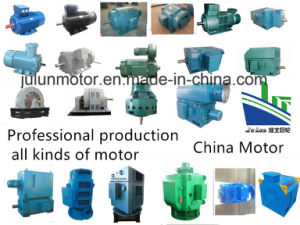 Asynchronous Motors/ Electric Motor/ Ht High Tension Motor/ Hv High Voltage Motor/Induction Motor/AC Motor pictures & photos