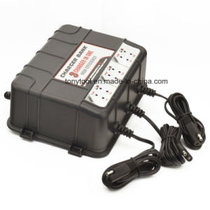 3-Bank 6A on-Board Battery Charger pictures & photos