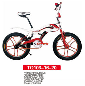 Aluminum Wheel of BMX Freestyle Bicycle 20inch pictures & photos