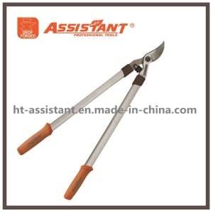 Horticultural Branch Garden Pruning Shears Drop Forged Bypass Lopper pictures & photos