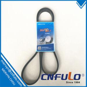 Poly V Belt, Multi Ribbed Belt, 12 Pk Belt pictures & photos