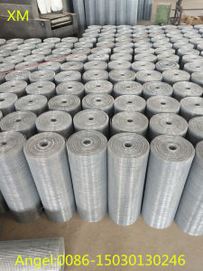 High Quality Galvanized Welded Wire Mesh for Construction pictures & photos