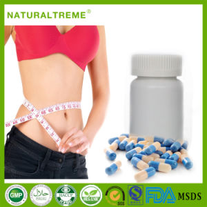 China Best Quality OEM L-Carnitine Fast Slimming Capsule