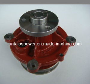 Deutz Engine Parts-1013 Water Pump (iron) pictures & photos