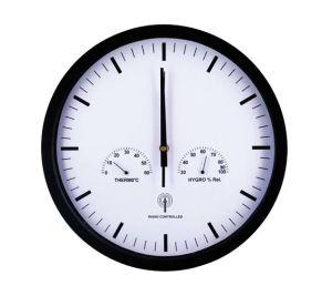 Radio Control Clock (6318)