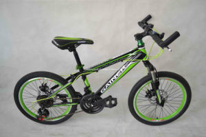 MTB Bike (WT-26405) pictures & photos