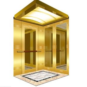 1350kg Mrl Home Lift with Golden Mirror Finish pictures & photos