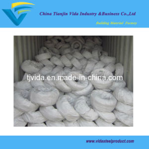 Galvanized Iron Steel Wire/Cable Wire/Electric Wire pictures & photos