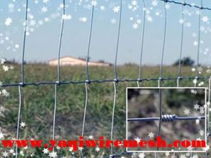 Field Fence/Cattle Fence/Sheep Fence with Lowest Price pictures & photos