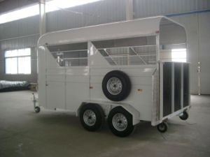 Horse Trailer-3 Horse Angle Load Economical Trailer