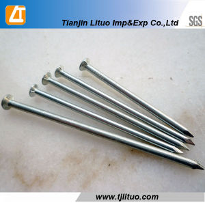 Polished/Electric Galvanized/Hot DIP Galvanized Common Nail pictures & photos
