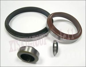 SC Type Oil Seal pictures & photos