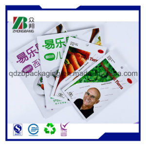 Laminating Plastic Flat Spice Packaging Pouch pictures & photos