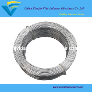 Hot Dipped Galvanized Wire (1kg per coil, 1.24mm) pictures & photos