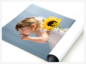 Custom Pirnting High Solution Printing Poster (YY-P001) pictures & photos