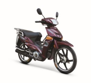 Motorcycle (BRG110-11)