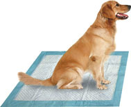 Disposable Pet Pad pictures & photos