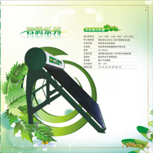 People Trust Products Jiao-Yang Solar