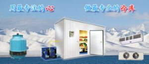 Cold Room and Freezer (LLC) pictures & photos