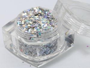 Glitter Powder (Star Shape) (TL001)