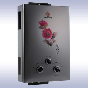Gas Water Heater (JSD12-20-21)
