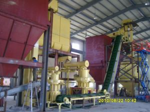 Complete Wood Pellet Making Line pictures & photos