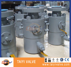 Dbb Ball Valve with Check Valve