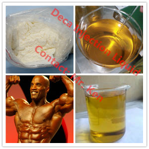 99% Anabolic Steroids Powder Decadurabolin/Nandrolone Deca/Nandrolone Decanoate for Muscle Building