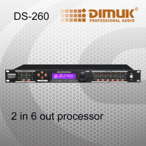 2 in 6 out Digital Processor (DS-260)