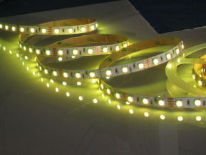 Rope Light (HLY-5050-60)