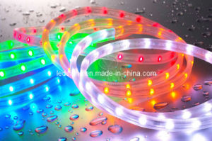 LED Rope Flat 3 Wires (LS-RF3R)