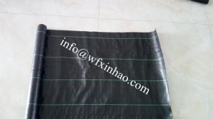 100GSM Weed Mat From Factory pictures & photos