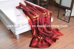 Pure Virgin Wool Blanket (NMQ-WB005) pictures & photos