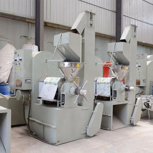 High Output Sunflower Seed Oil Press Machine pictures & photos