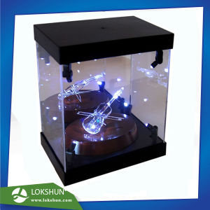 Transparent Acrylic LED Display Cabinet with Spotlight Inside, Top and Base Are with Black Matt Acrylic pictures & photos