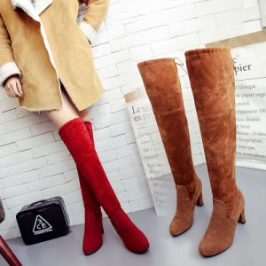 The Winter Warm Cotton Suede Boots High Heels Boots Women Shoes Winter Snow Boots for Women pictures & photos