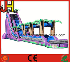 Giant Inflatable Slip N and Slide for Sale pictures & photos