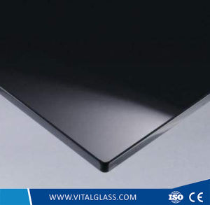 3mm-12mm Clear Construction Glass/ Simple Glass Sgg Securit Hst Planiclear Opaque/Architectural Glass/ Silk Screen Print Glass pictures & photos